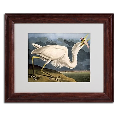 Trademark Fine Art 'Great White Heron' 11