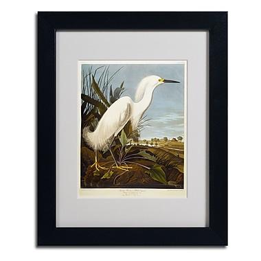 Trademark Fine Art 'Snowy Heron' 11