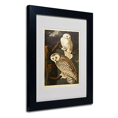 Trademark Fine Art 'Snowy Owl'
