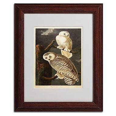 Trademark Fine Art 'Snowy Owl' 11