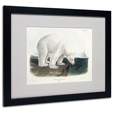 Trademark Fine Art 'Ursus Maritimus Polar Bear' 16