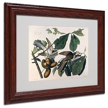 Trademark Fine Art 'Yellow-Billed Cuckoo' 11
