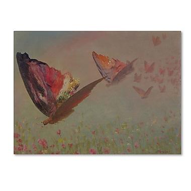 Trademark Fine Art 'Butterflies With Riders' 24
