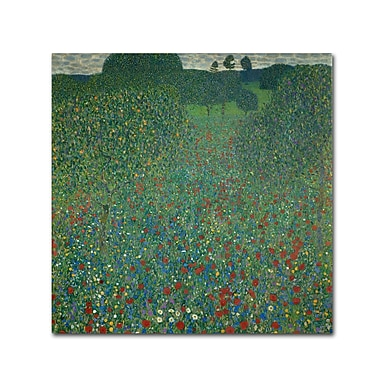 Trademark Fine Art 'Field of Poppies 1907'