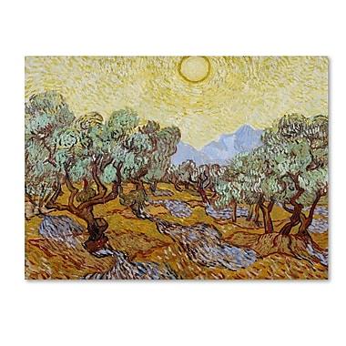 Trademark Fine Art 'Olive Trees 1889' 35