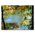 Trademark Fine Art 'Early Fall Along the River'