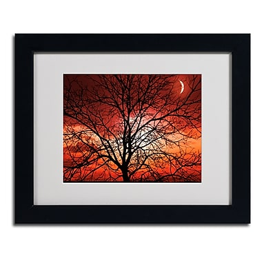 Trademark Fine Art 'Big Bad Moon'