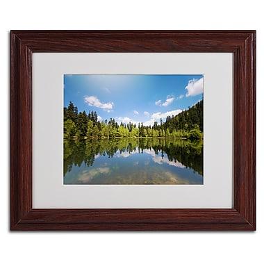 Trademark Fine Art 'Lake Maix' 11