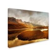 "Trademark Fine Art 'Shades of Gold' 22"" x 32"" Canvas Art"