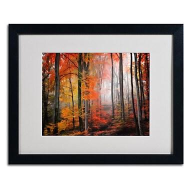 Trademark Fine Art 'Wildly Red' 16