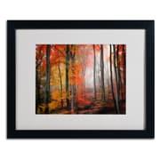 "Trademark Fine Art 'Wildly Red' 16"" x 20"" Black Frame Art"