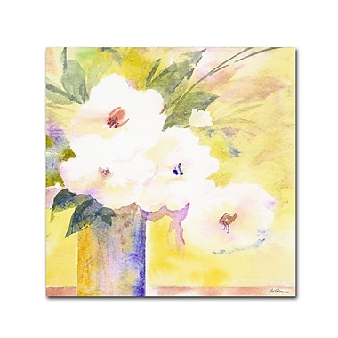 Trademark Fine Art 'White Flower Shadows' 35