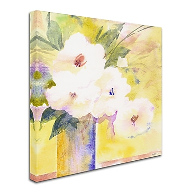 Trademark Fine Art 'White Flower Shadows' 24
