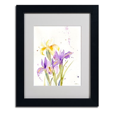 Trademark Fine Art 'The Golden Iris'