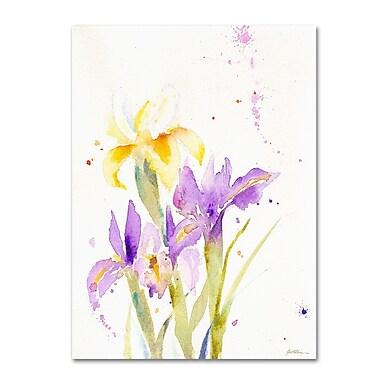 Trademark Fine Art 'The Golden Iris' 18