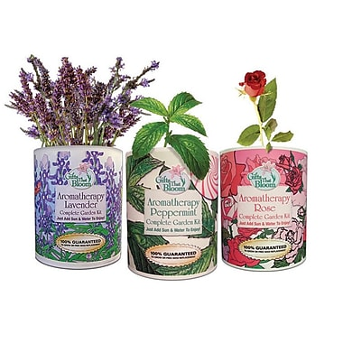 S&S® Aromatherapy Garden In A Can
