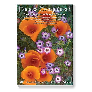 S&S® Flowers Everywhere DVD