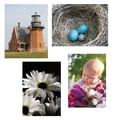 S&S® 17in. X 11in. Thera Jigsaw Foam Puzzles Set A, Baby/Lighthouse/Robin's Nest/Daisies