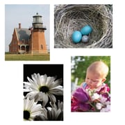 "S&S® 17"" X 11"" Thera Jigsaw Foam Puzzles Set A, Baby/Lighthouse/Robin's Nest/Daisies"