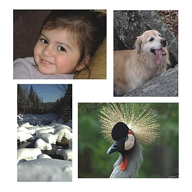 S&S® 17in. X 11 1/4in. Thera Jigstick Puzzles Set B, Girl/Dog/Bird/Snow