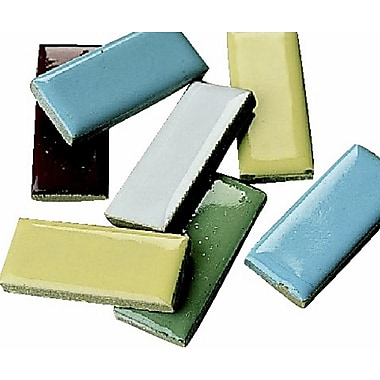 S&S® 1in. X 1/2in. Rectangle Shape Mosaic Tile, 5 lbs., 580/Pack