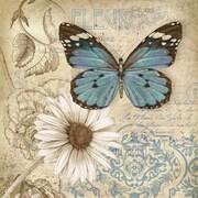 """Butterfly Garden II, Framed, 27"""" x 27"""""""