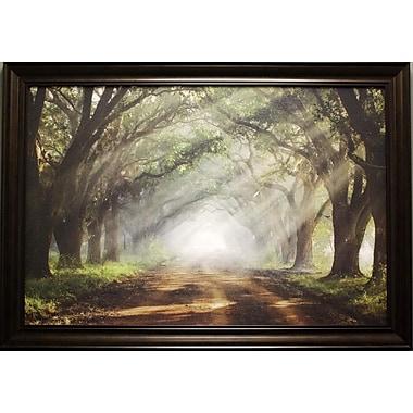 Evergreen Plantation, Framed, 24