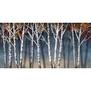 "Birch Shadows, Framed, 18"" x 36"""