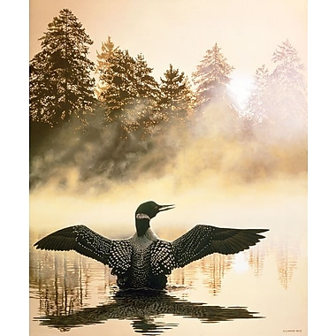 Misty Dawn Loon, Canvas, 30