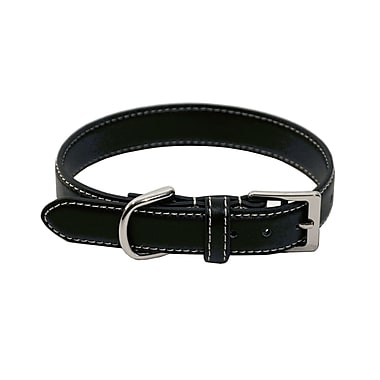 Royce Leather Small Dog Collar, 11