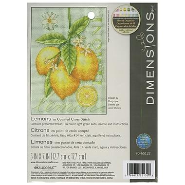 Lemons Mini Counted Cross Stitch Kit, 5