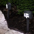 Mr. Beams Landscape Lighting (Set of 2)