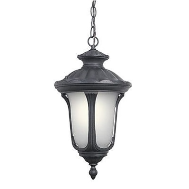 Woodbridge Westbrook 1 Light Outdoor Hanging Pendant; Powder Coat Black