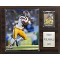 C & I Collectibles NCAA Football Player Plaque; University Of Southern California - Troy Polamalu
