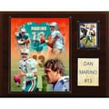 C & I Collectibles NFL Player Plaque; Miami Dolphins - Dan Marino