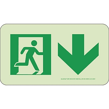NYC Directional Sign, Down, 4.5