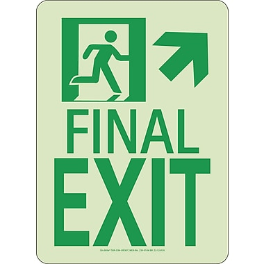 NYC Final Exit Sign, Up Right, 11