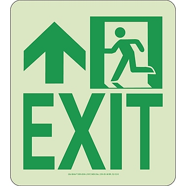 NYC Wall Mont Exit Sign, Forward/Left Side, 9