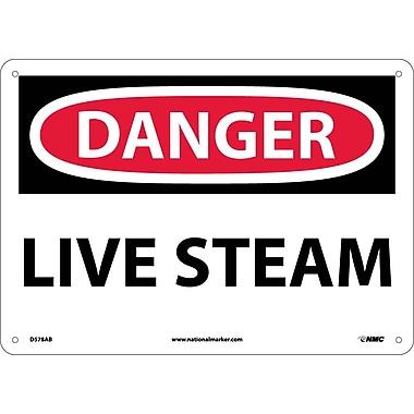 Danger, Live Steam, 10X14, .040 Aluminum