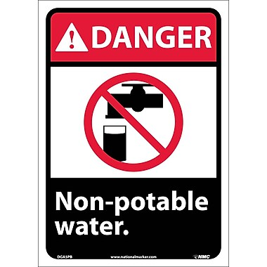 Danger, Non-Potable Water (W/Graphic), 14X10, Adhesive Vinyl