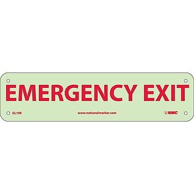 Emergency Exit, 3X12, Glow Rigid