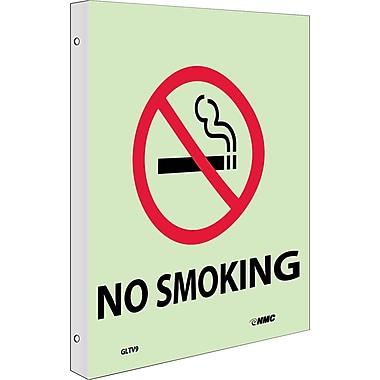 Fire, No Smoking, 10X8, Plastic Flangedglow