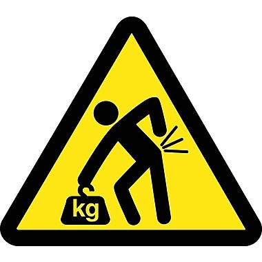 Label, Graphic For Lifting Hazard, 2In Dia, Adhesive Vinyl