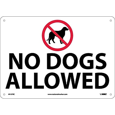 No Dogs Allowed, Graphic, 14