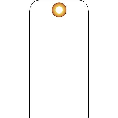 Accident Prevention Tags, (Blank), 6X3, Unrip Vinyl, 25/Pk W/ Grommet