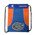 Concept One NCAA Axis Backsack; Florida Gators