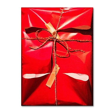 Trademark Fine Art 'Red Wrap' 24