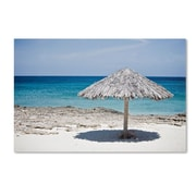 Trademark Fine Art 'Aruba Umbrella' 22 x 32 Canvas Art