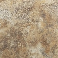Achim Importing Co Nexus 12'' x 12'' Vinyl Tile in Granite
