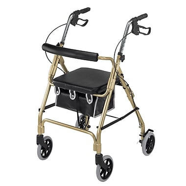 Briggs Healthcare Lightweight Aluminum Rollator Curved Backrest